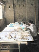 Photo: La antropóloga Miriam Pina clasificando y ordenando los restos.