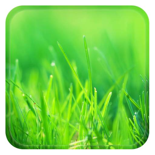 Green World Live Wallpaper Icon