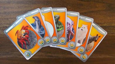 Photo: 26 cards, each featuring a different animal, from crabs to tree frogs.