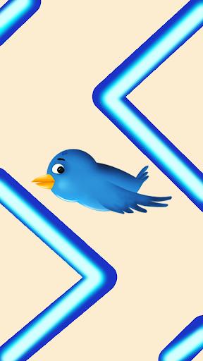 BlueBird Zig Zag