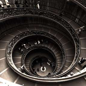 spiral stair in vatican museum by Almas Bavcic - Buildings & Architecture Other Interior ( interior, building, black and white, monotone )