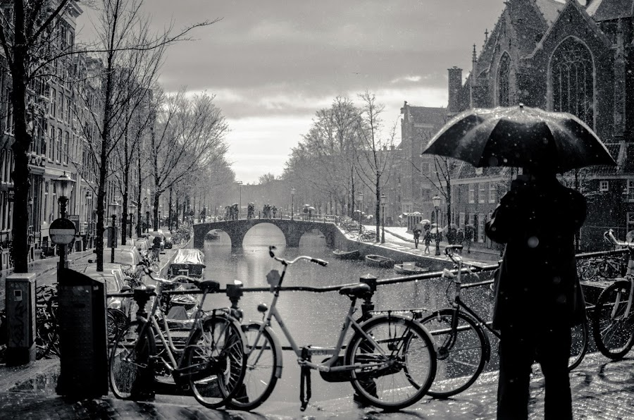 Shooting In The Rain by John Gillooley - Black & White Landscapes ( clouds, bikes, umbrella, grey, amsterdam, beauty, bridge, mono, rain )