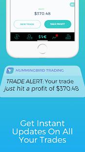 Hummingbird Trading - náhled