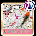 Koi fish @Xperia theme icon