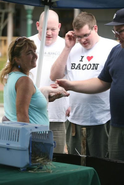 Photo: Uh…he's looking pretty intensely at that pig….