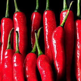 Red Hot Chili Peppers by Frederiko Ferry - Food & Drink Fruits & Vegetables ( cayenne, red pepper, red chili, pepper, vegetable, chili )