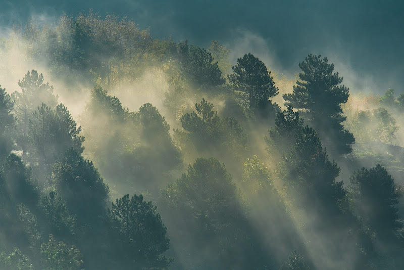 il sole tra le nebbie di skifun