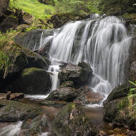 Bavarian Waterfall by Radek Lauko - Landscapes Waterscapes ( forest, bavaria, waterfall, water,  )