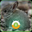 Baby Bunny Wall & Lock icon