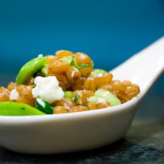 Green Garlic and Fava Wheat Berry Salad