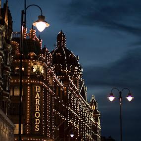 Harrods at sunset by Svetoslava Todorova - Buildings & Architecture Public & Historical ( evening lights, london, decoration, sunset, christmas, harrods )