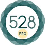 528 Player - Music With Love Like a Pro 20.8 (Paid)