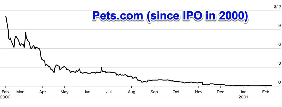 pets.com during the dot.com bubble