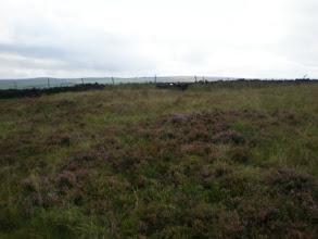 Photo: PW - Moorland between Colden and Graining Water