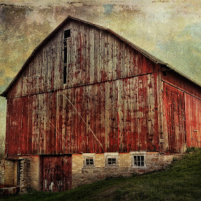 Tall and Majestic by Vivian Gordon - Buildings & Architecture Public & Historical ( vigor, barn, architecture, rural, country )