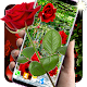 3D Red Roses Parallax Live Wallpapers (app)
