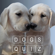 How Many Of These Dog Breeds Do You Know ?