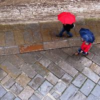 Passeggiata sotto la pioggia di