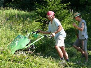 Photo: Kosení na louce Lanovka
