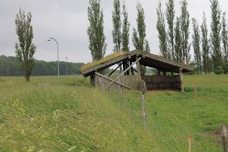 Photo: Avedøresletten