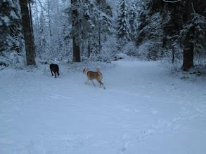 Photo: Ja talvi tuli kylään taas. Majakka ja perävaunu :D
