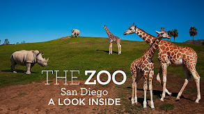 The Zoo: San Diego - A Look Inside thumbnail
