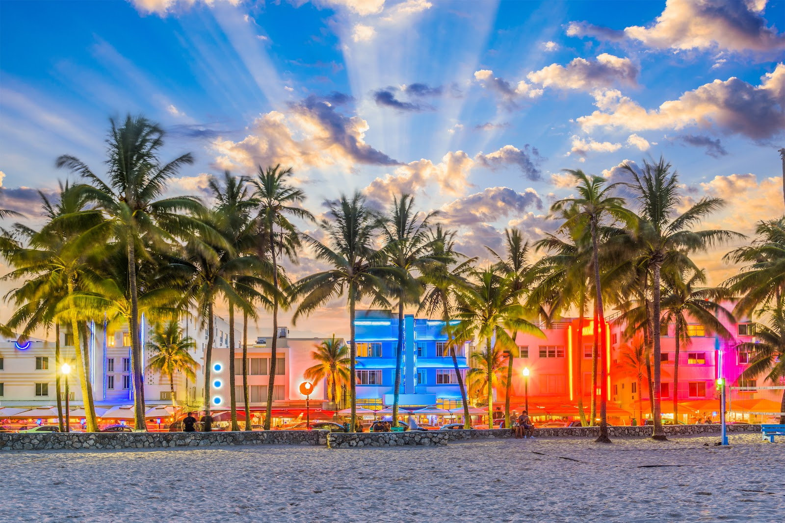 Big palm trees separating the buzzing Ocean Drive with it's colorful lights from the beach.
