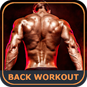 Back Workout Exercises