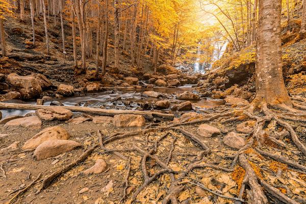 cascate d'autunno di salvolaverde