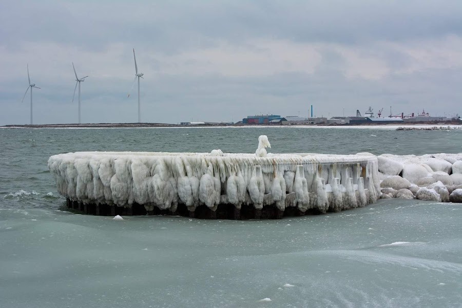 Winter 2 by Henrik  Krogsgaard - Novices Only Landscapes ( ice, wather, winther )