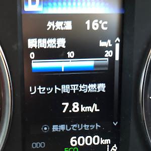 アルファード 30系 AGH30W SCパッケージ(2眼)のカスタム事例画像 隼さんの2019年04月29日01:01の投稿