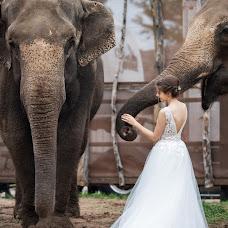 Hochzeitsfotograf Andrey Balabasov (pilligrim). Foto vom 14.11.2019