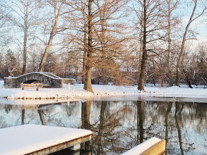 Photo: Sunset on snowy lake with a stone bridge and bench with the trees reflected in the water at Eastwood Park in Dayton, Ohio.