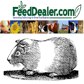 Guinea Pig Breeding Calculator