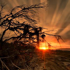 After the Storm by David Morris - Landscapes Sunsets & Sunrises ( landscapes )