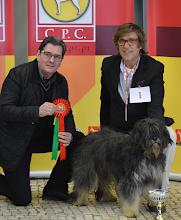 Photo: Carlos Costa, à direita, criador de cães da Serra de Aires