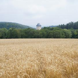 Tower in a countryside by Luboš Zámiš - Landscapes Travel