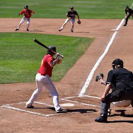 Man on First by Garry Dosa - Sports & Fitness Baseball ( red, ball, sports, may, teams, baseball, competitive, hitting )