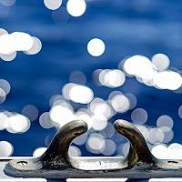 Riflessi nel mare  di