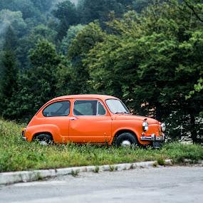 orange fiat by Lucija Janša - City,  Street & Park  Markets & Shops ( orange, green, street, neighborhood, retro )