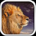 Wild Lion Live Wallpaper HD icon
