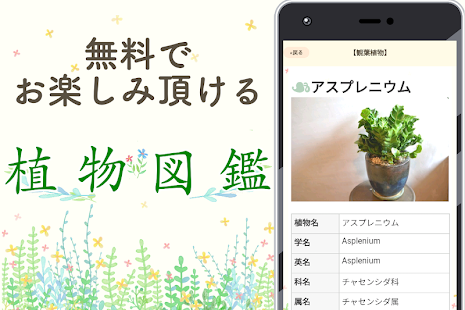 名前 花 を 調べる アプリ の 類似アプリにご注意ください