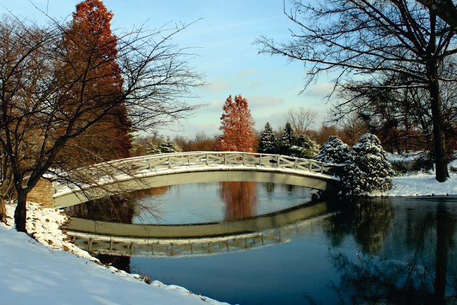 Bridge to Wonderland by Nicki Carlton Boggs - Buildings & Architecture Bridges & Suspended Structures ( garyfonglandscapes, water, reflection, footbridge, holiday photo contest, landscape, photocontest, country, winter scene, winter, ice, trail, snow, bridge, scenery,  )