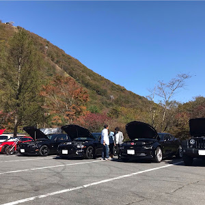 マスタング  18y GT プレミアム ファストバックのカスタム事例画像 オレンジバードさんの2018年10月21日22:13の投稿