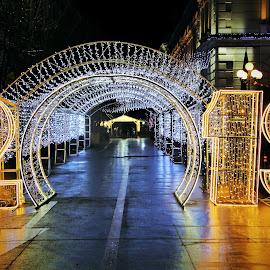Arad, Romania by Alin Achim R - City,  Street & Park  Night