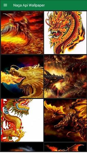 Naga Api Wallpaper Keren Apk App Free Download For Android