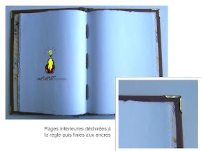 Photo: Pages intérieurs déchirées et encrées