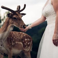 Wedding photographer Mitja Železnikar (zeleznikar). Photo of 04.07.2016
