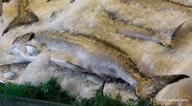 Photo: (Year 2) Day 339 - One of the Fish Stalls in Pike Place Fish Market #2