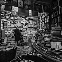 Libreria Acqua Alta, un ordinato disordine  di